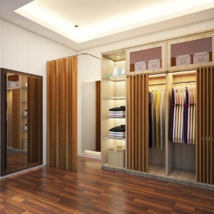 Interior Walk in Closet (3D Visualization)